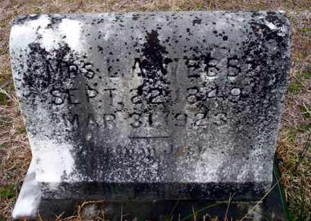 WEBB, MRS E.A. - Ouachita County, Arkansas | MRS E.A. WEBB - Arkansas Gravestone Photos