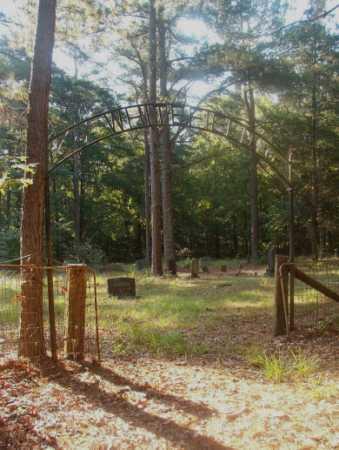 *WHITEFIELD, CEMETERY - Ouachita County, Arkansas | CEMETERY *WHITEFIELD - Arkansas Gravestone Photos