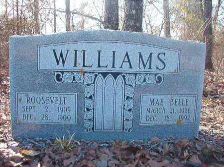 WILLIAMS, ROOSEVELT - Ouachita County, Arkansas   ROOSEVELT WILLIAMS - Arkansas Gravestone Photos