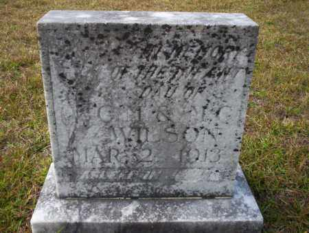 WILSON, INFANT DAUGHTER - Ouachita County, Arkansas | INFANT DAUGHTER WILSON - Arkansas Gravestone Photos