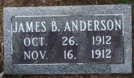ANDERSON, JAMES B - Perry County, Arkansas | JAMES B ANDERSON - Arkansas Gravestone Photos