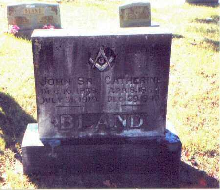 BLAND, LUCINDA CATHERINE - Perry County, Arkansas | LUCINDA CATHERINE BLAND - Arkansas Gravestone Photos