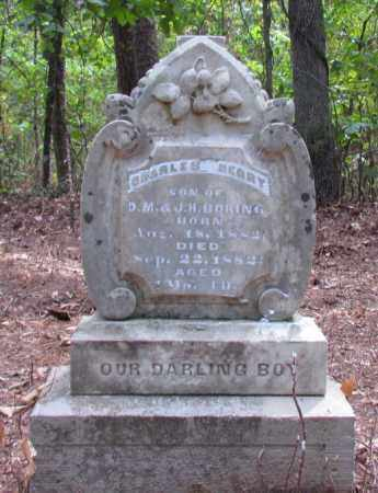 BORING, CHARLES HENRY - Perry County, Arkansas | CHARLES HENRY BORING - Arkansas Gravestone Photos