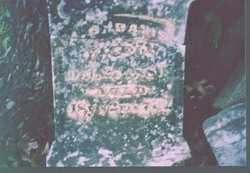 DAVIS, AARON - Perry County, Arkansas | AARON DAVIS - Arkansas Gravestone Photos