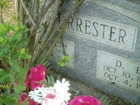 FORRESTER, ELIZABETH - Perry County, Arkansas | ELIZABETH FORRESTER - Arkansas Gravestone Photos