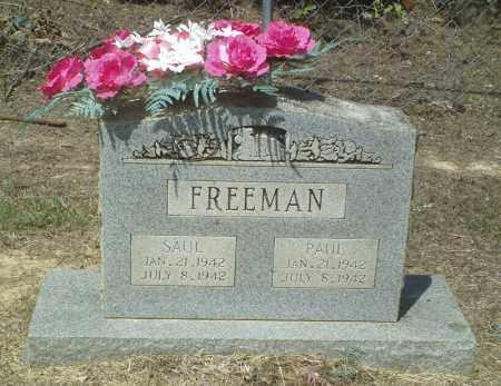 FREEMAN, PAUL - Perry County, Arkansas | PAUL FREEMAN - Arkansas Gravestone Photos