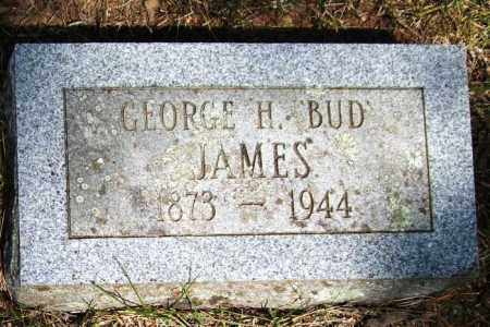 """JAMES, GEORGE H. """"BUD"""" - Perry County, Arkansas 