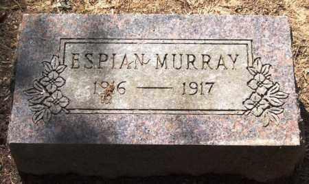 MURRAY, ESPIAN - Perry County, Arkansas | ESPIAN MURRAY - Arkansas Gravestone Photos