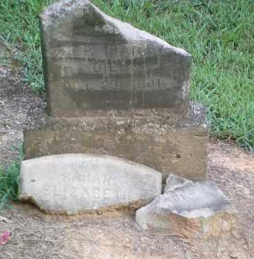 RANKIN, SARAH ELIZABETH - Perry County, Arkansas | SARAH ELIZABETH RANKIN - Arkansas Gravestone Photos