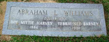 WILLIAMS, ABRAHAM L - Perry County, Arkansas | ABRAHAM L WILLIAMS - Arkansas Gravestone Photos
