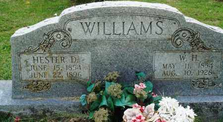 WILLIAMS, W H - Perry County, Arkansas | W H WILLIAMS - Arkansas Gravestone Photos