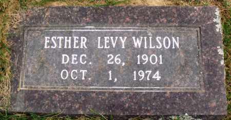 WILSON, ESTHER LEVY - Perry County, Arkansas   ESTHER LEVY WILSON - Arkansas Gravestone Photos