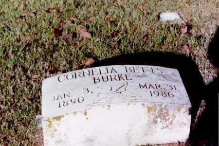 BETTS BURKE, CORNELIA LEWIS - Phillips County, Arkansas | CORNELIA LEWIS BETTS BURKE - Arkansas Gravestone Photos