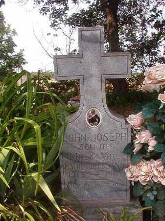 DIESS, JOHN JOSEPH - Phillips County, Arkansas | JOHN JOSEPH DIESS - Arkansas Gravestone Photos