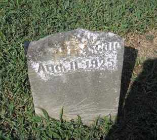 RAGSDALE, INFANT - Phillips County, Arkansas | INFANT RAGSDALE - Arkansas Gravestone Photos