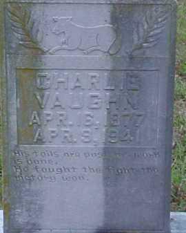 VAUGHN, CHARLIE - Pike County, Arkansas | CHARLIE VAUGHN - Arkansas Gravestone Photos