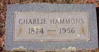 HAMMONS, CHARLIE - Pike County, Arkansas   CHARLIE HAMMONS - Arkansas Gravestone Photos