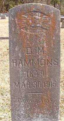 HAMMONS, D M - Pike County, Arkansas | D M HAMMONS - Arkansas Gravestone Photos