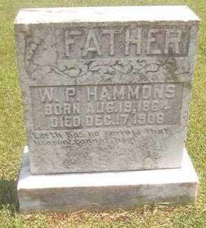 HAMMONS, W P - Pike County, Arkansas | W P HAMMONS - Arkansas Gravestone Photos