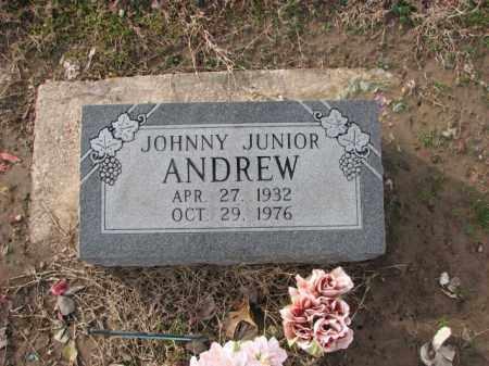 ANDREW, JOHNNY JUNIOR - Poinsett County, Arkansas | JOHNNY JUNIOR ANDREW - Arkansas Gravestone Photos
