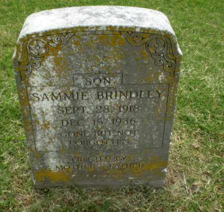 BRINDLEY, SAMMIE - Poinsett County, Arkansas   SAMMIE BRINDLEY - Arkansas Gravestone Photos