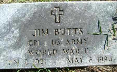 BUTTS  (VETERAN WWII), JIM - Poinsett County, Arkansas | JIM BUTTS  (VETERAN WWII) - Arkansas Gravestone Photos