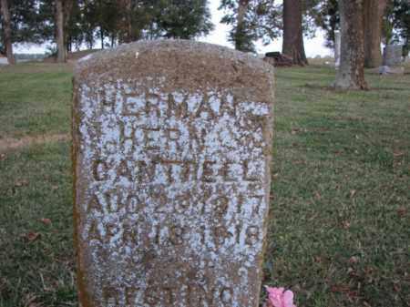 CANTRELL, HERMAN HERN - Poinsett County, Arkansas | HERMAN HERN CANTRELL - Arkansas Gravestone Photos
