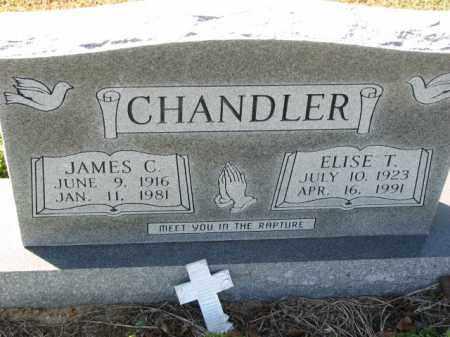 CHANDLER, ELISE T. - Poinsett County, Arkansas   ELISE T. CHANDLER - Arkansas Gravestone Photos