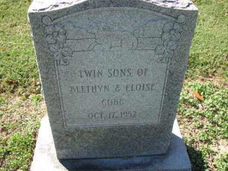 COBB, INFANT TWIN SONS - Poinsett County, Arkansas | INFANT TWIN SONS COBB - Arkansas Gravestone Photos