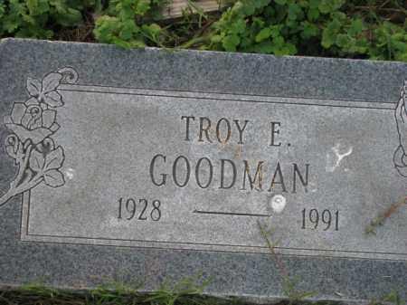 GOODMAN, TROY E. - Poinsett County, Arkansas | TROY E. GOODMAN - Arkansas Gravestone Photos