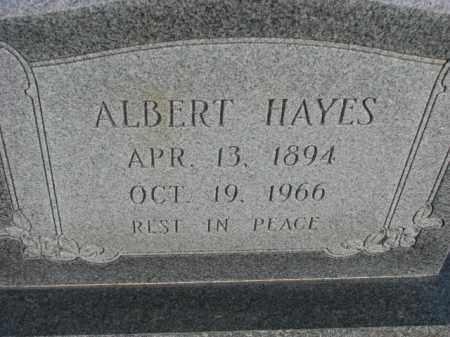 HAYES, ALBERT - Poinsett County, Arkansas | ALBERT HAYES - Arkansas Gravestone Photos