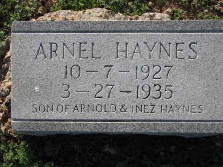 HAYNES, ARNEL - Poinsett County, Arkansas | ARNEL HAYNES - Arkansas Gravestone Photos