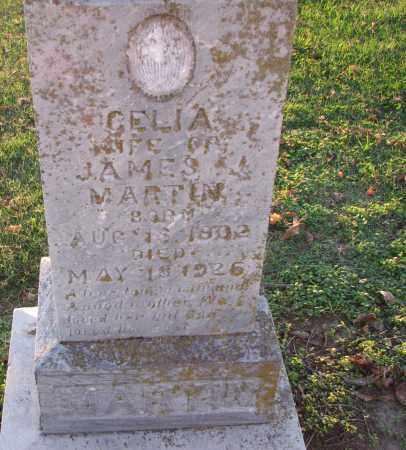 MARTIN, CELIA - Poinsett County, Arkansas | CELIA MARTIN - Arkansas Gravestone Photos