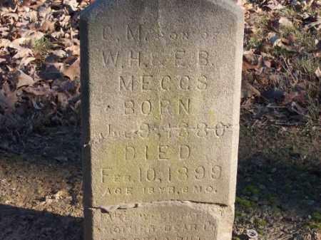 MECCS, C M - Poinsett County, Arkansas | C M MECCS - Arkansas Gravestone Photos