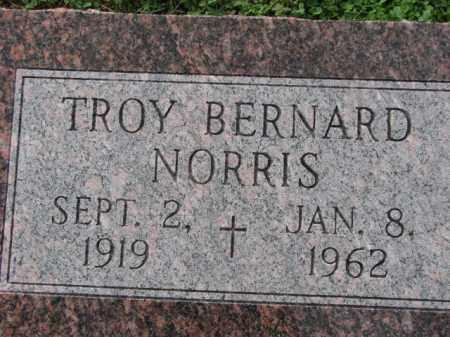 NORRIS, TROY BERNARD - Poinsett County, Arkansas | TROY BERNARD NORRIS - Arkansas Gravestone Photos