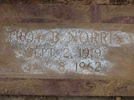 NORRIS, TROY B. - Poinsett County, Arkansas   TROY B. NORRIS - Arkansas Gravestone Photos