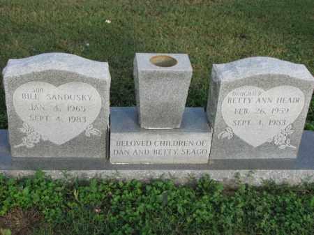 HEAIR, BETTY ANN - Poinsett County, Arkansas | BETTY ANN HEAIR - Arkansas Gravestone Photos