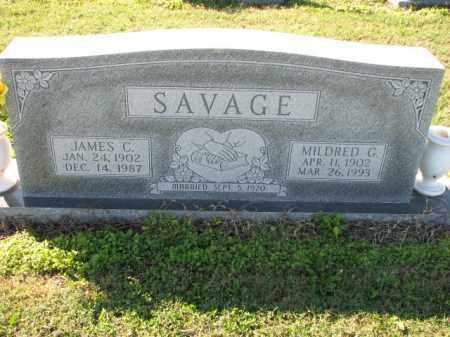 SAVAGE, JAMES C. - Poinsett County, Arkansas | JAMES C. SAVAGE - Arkansas Gravestone Photos