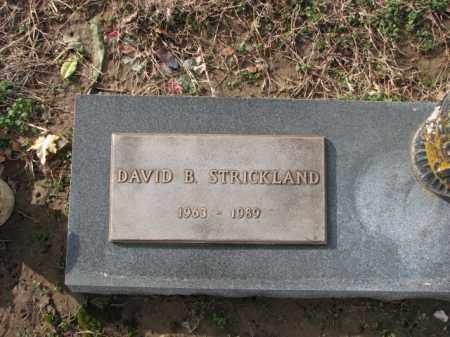 STRICKLAND, DAVID B. - Poinsett County, Arkansas   DAVID B. STRICKLAND - Arkansas Gravestone Photos
