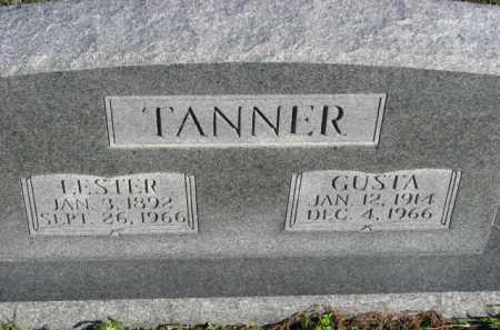 TANNER, LESTER - Poinsett County, Arkansas | LESTER TANNER - Arkansas Gravestone Photos