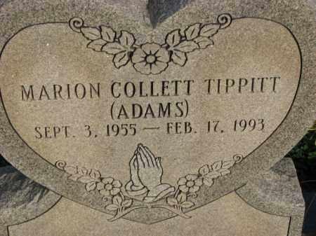 TIPPITT (ADAMS), MARION COLLETT - Poinsett County, Arkansas | MARION COLLETT TIPPITT (ADAMS) - Arkansas Gravestone Photos