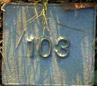 UNKNOWN, MARKER #103 - Poinsett County, Arkansas | MARKER #103 UNKNOWN - Arkansas Gravestone Photos