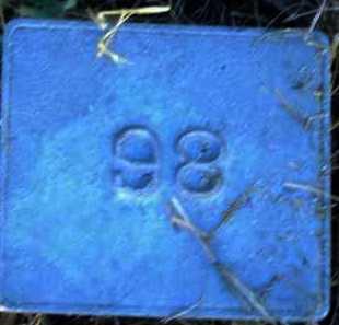 UNKNOWN, MARKER #98 - Poinsett County, Arkansas | MARKER #98 UNKNOWN - Arkansas Gravestone Photos