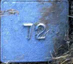 UNKNOWN, MARKER #72 - Poinsett County, Arkansas | MARKER #72 UNKNOWN - Arkansas Gravestone Photos