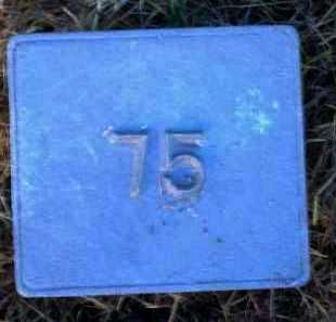 UNKNOWN, MARKER #75 - Poinsett County, Arkansas | MARKER #75 UNKNOWN - Arkansas Gravestone Photos