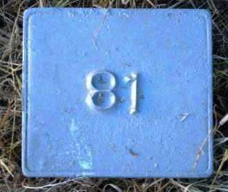 UNKNOWN, MARKER #81 - Poinsett County, Arkansas | MARKER #81 UNKNOWN - Arkansas Gravestone Photos