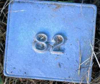 UNKNOWN, MARKER #82 - Poinsett County, Arkansas   MARKER #82 UNKNOWN - Arkansas Gravestone Photos