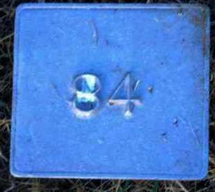 UNKNOWN, MARKER #84 - Poinsett County, Arkansas | MARKER #84 UNKNOWN - Arkansas Gravestone Photos