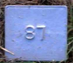 UNKNOWN, MARKER #87 - Poinsett County, Arkansas   MARKER #87 UNKNOWN - Arkansas Gravestone Photos