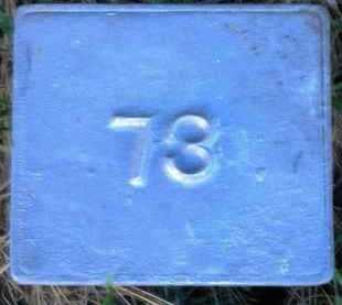 UNKNOWN, MARKER #73 - Poinsett County, Arkansas | MARKER #73 UNKNOWN - Arkansas Gravestone Photos